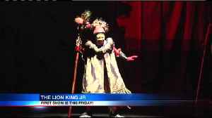 The Lion King Jr at the Erie Playhouse [Video]