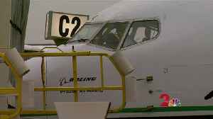 Pilot to donate kidney to flight attendant [Video]