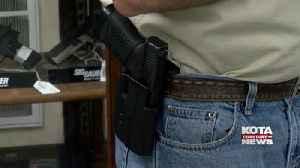 Lawmakers consider gun bill [Video]
