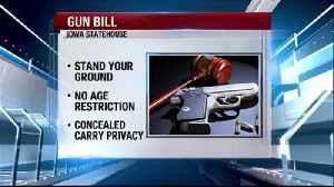 Heated debate over guns and gun rights [Video]