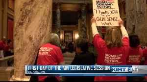 Activists At The Capitol [Video]