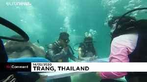 Deeply in love: underwater wedding on Valentine's Day in Thailand [Video]
