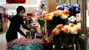 Beijing flower business suffers due to coronavirus outbreak [Video]