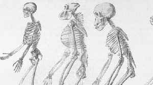 Old age: mysterious 'ghost population' DNA of ancient humans discovered [Video]
