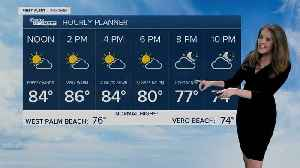 South Florida Thursday afternoon forecast (2/13/20) [Video]