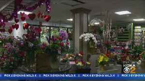News video: Keeping Valentine's Day Flowers Fresh