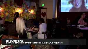 Fairfax District Bar Offers Fun for Singles [Video]