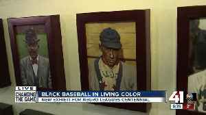 Art exhibit honors Negro Leagues for centennial celebration [Video]