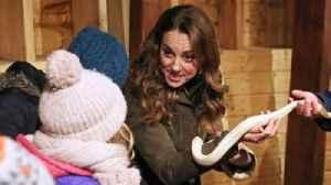 Duchess of Cambridge suffers from 'mum guilt' [Video]