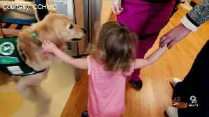 K9 delivers Valentines to young heart transplant recipients [Video]