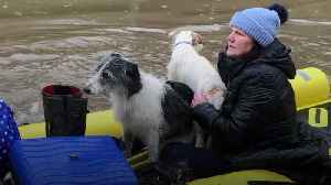 News video: Storm Dennis: Residents and their pets evacuated from flood-hit areas