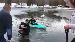 Springfield Township police officer rescues dog from icy pond, reunites him with family [Video]