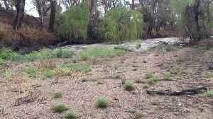 Namoi River Reborn After Heavy Rain [Video]