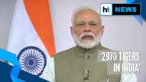 'India has achieved target of doubling number of tigers': PM Modi [Video]
