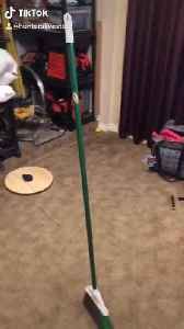 Broom stands upright all by itself while Earth is at the perfect angle [Video]