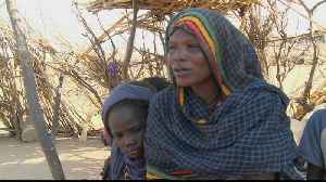 Sudan: Darfur struggling to recover after 17 years of war [Video]