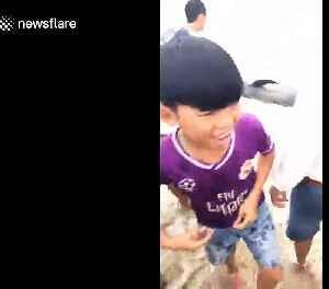 Vietnamese fishermen fail to rescue four-metre-long stranded whale [Video]