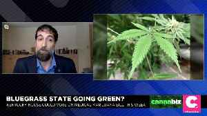Kentucky Medical Marijuana Bill Heads to State House for Vote [Video]