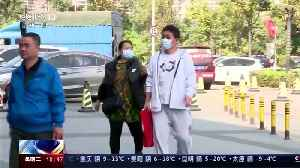 Quarantined passengers disembark ship in Japan [Video]