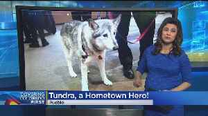 CSU Pueblo's 'Tundra' Receives Hometown Heroes Award [Video]