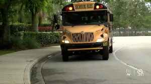 Martin County School District votes to end Pay to Ride system [Video]