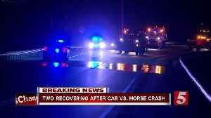 Two women hurt, horses killed in Maury County crash [Video]