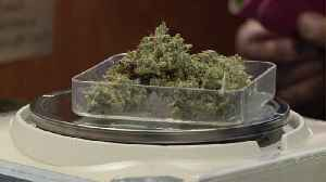 Colorado Reports Record Marijuana Sales of $1.75 Billion From 2019 [Video]