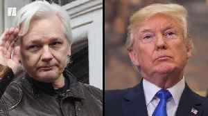 News video: Julian Assange Lawyers Say Trump Offered Pardon