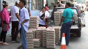 Chinese tourists offer spirits at Thai Buddhist temple 200,000 eggs to fight coronavirus [Video]