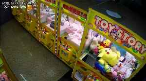 Cat caught on CCTV trying to 'steal' cuddly toy from claw grabber arcade machine [Video]