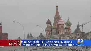 Intel Officials Tell Congress Russians Trying To Help President Trump With Election [Video]