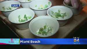 Cooper Vine Exec Chef Shows Off His Dish At SOBE Wine & Food Fest [Video]