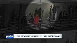 Fight breaks out in stands of youth hockey game, NY division of USA Hockey investigating [Video]
