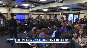 Trans student-athletes bill heads to floor with 'do pass' recommendation [Video]