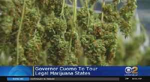Cuomo To Visit Legal Marijuana States [Video]