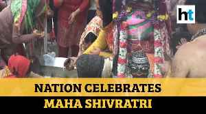 Maha Shivratri 2020: Devotees throng temples across nation to offer prayers [Video]