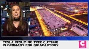 Tesla Resuming Tree Cutting for Gigafactory in Germany [Video]