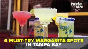 6 must-try margarita spots in Tampa Bay | Taste and See Tampa Bay [Video]