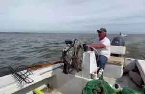 Oystermen struggle to survive amid Florida, Georgia water battle