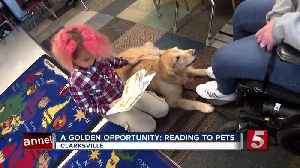A Golden Opportunity: Retrievers visit Clarksville schools to help students learn to read [Video]