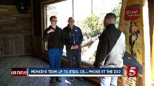 Monkey steals zookeeper's cell phone at Nashville Zoo exhibit [Video]