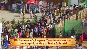 Lingaraj Temple witnesses massive rush on Maha Shivratri [Video]