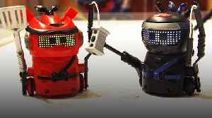 Spin Master's Ninja Bots at Toy Fair 2020 [Video]