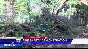 Butte County Fire Safe Council & American Forest Foundation team up to thin forests [Video]