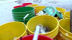 West Boca High School students participate in beach cleanup [Video]