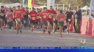 Hundreds Hit The Pavement At Zoo Miami For Live Like Bella 5K [Video]