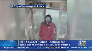 McKeesport Police Searching For Theft Suspect [Video]