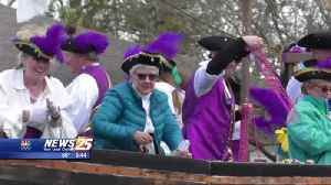 Mystic Krewe of Seahorse Parade [Video]