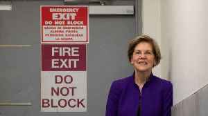 Jack Black Endorses Elizabeth Warren [Video]