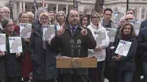 City Council Considers BQE Changes [Video]